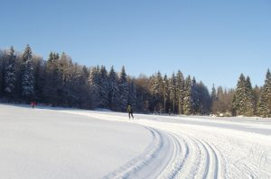 WinterSkiwandern-Storchswiese-Web